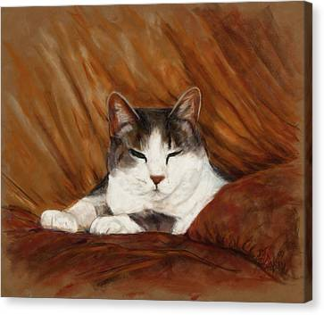 Cat Nap Canvas Print by Billie Colson