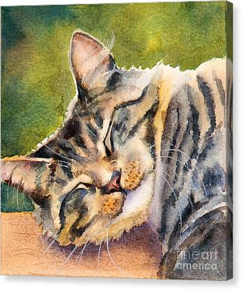 Canvas Print featuring the painting Cat Nap by Bonnie Rinier