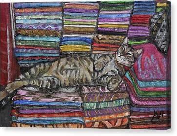 Canvas Print - Cat Nap by Kim Selig