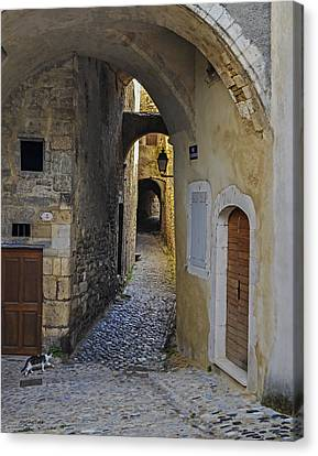 Canvas Print featuring the photograph Cat On A Quiet Street In Viviers by Allen Sheffield