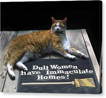 Cat On Dull Women Mat Canvas Print by Sally Weigand