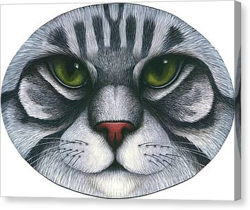 Cat Oval Face Canvas Print by Carol Wilson