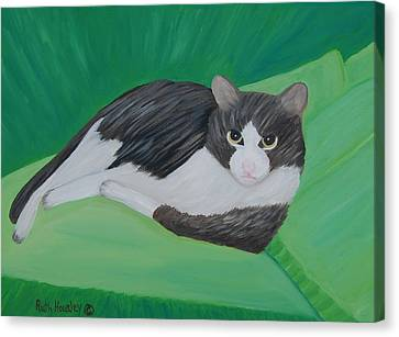 Cat Portrait  Sold Canvas Print by Ruth  Housley
