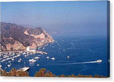 Catalina Calif............ Canvas Print