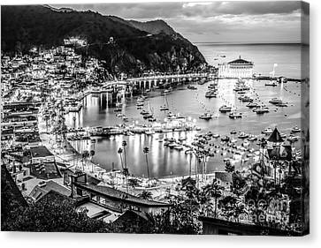 Casino Pier Canvas Print - Catalina Island Avalon Bay Black And White Picture by Paul Velgos