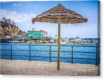 Catalina Island Straw Umbrella Picture Canvas Print