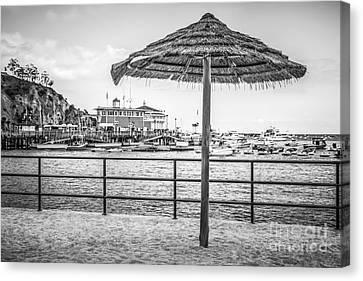Catalina Island Umbrella In Black And White Canvas Print