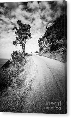 Catalina Island Wrigley Road Black And White Photo Canvas Print by Paul Velgos