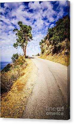 Catalina Island Wrigley Road In The Mountains Canvas Print by Paul Velgos