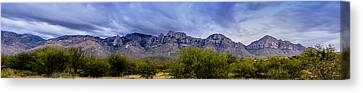 Canvas Print featuring the photograph Catalina Mountains P1 by Mark Myhaver