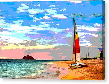 Water Vessels Canvas Print - Catamaran by Charles Shoup