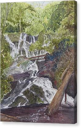 Canvas Print featuring the painting Catawba Falls - Working Notes by Joel Deutsch
