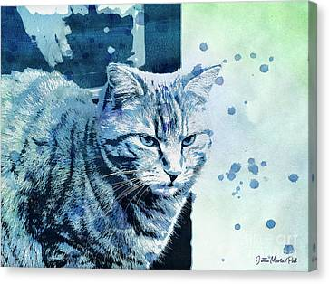 Catbird Seat Canvas Print by Jutta Maria Pusl