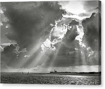 Catboats Sailing In Barnstable Harbor Canvas Print by Charles Harden