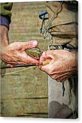 Catch And Release Rainbow Trout Canvas Print