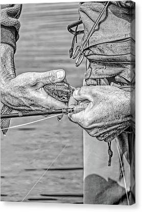 Catch And Release Rainbow Trout Monochrome Canvas Print by Jennie Marie Schell