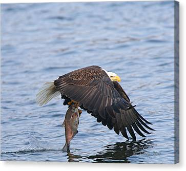 Catch Of The Day...for Both Of Us Canvas Print by Gerry Sibell