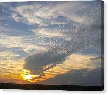 Catch The Morning Sun Canvas Print