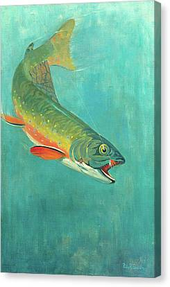 Catching The Bait Canvas Print by Philip R Goodwin