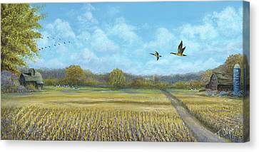 Catching The Flock Canvas Print