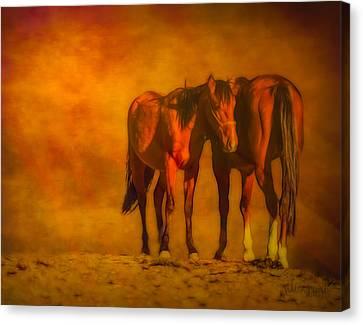 Catching The Last Sun Digital Painting Canvas Print