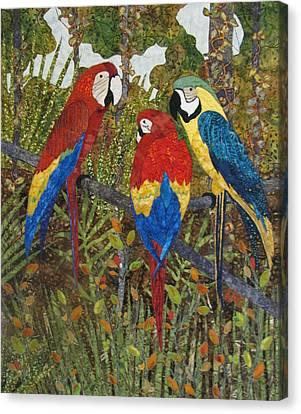 Catching Up On Gossip Canvas Print by Lynda K Boardman