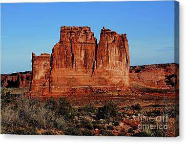 Canvas Print featuring the photograph Cathedral by Edward R Wisell
