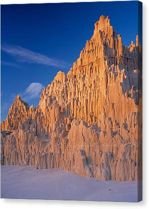 Cathedral Mounds Canvas Print by Leland D Howard