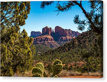 Cathedral Rock #1 Canvas Print by Jon Manjeot