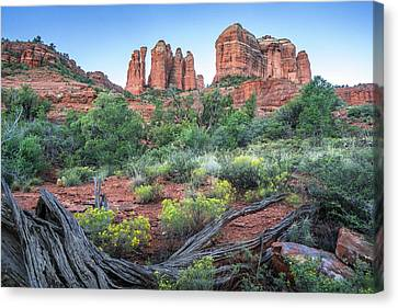 Cathedral Rock In Twilight Canvas Print