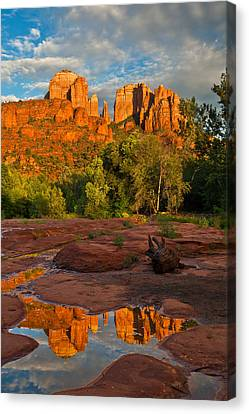 Cathedral Rock Reflection Canvas Print by Guy Schmickle