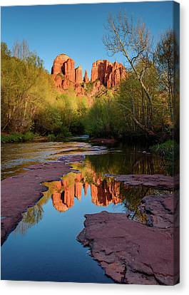 Cathedral Rock Reflection Vertical Canvas Print by Michael Blanchette