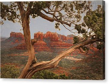Cathedral Rock View Canvas Print by Donna Kennedy