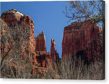 Cathedral Rock View Canvas Print