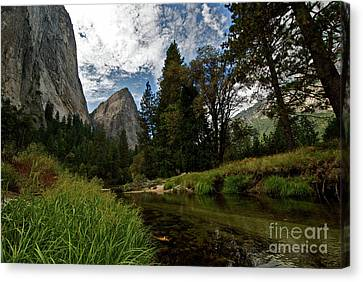 Cathedral Rocks Along The Merced Canvas Print by Chris Brewington Photography LLC