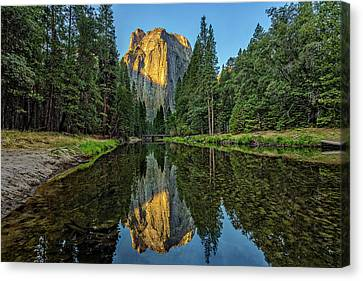 Cathedral Rocks Morning Canvas Print by Peter Tellone