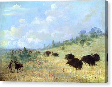 Catlin: Elk & Buffalo Canvas Print by Granger