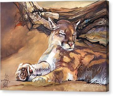 Catnap Canvas Print - Catnap by J W Baker