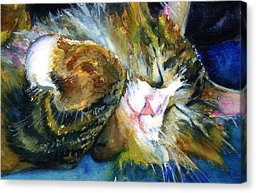 Cats Eyes 14 Canvas Print by John D Benson