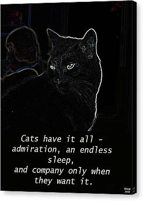 House Pet Canvas Print - Cats Have It All by Charles Shoup