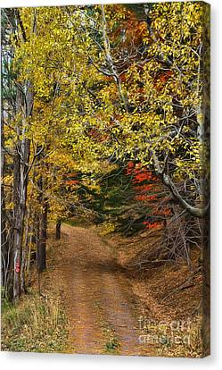 Catskill Color Canvas Print by Deborah Benoit