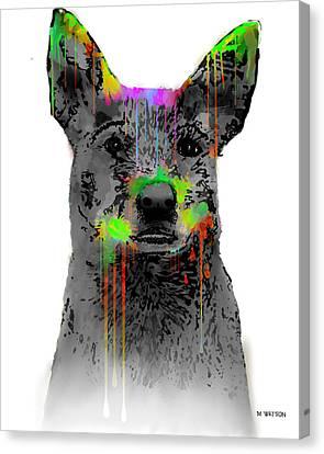 Australian Cattle Dog Canvas Print by Marlene Watson