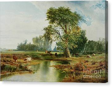 Cattle Watering Canvas Print by Thomas Moran