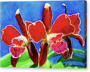 Cattleya Orchids Flowers #215 Canvas Print by Donald k Hall