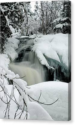 Cattyman Falls In Winter - Vertical Canvas Print by Larry Ricker