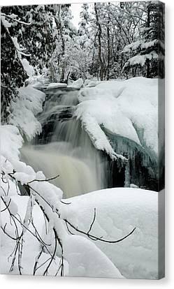 Cattyman Falls In Winter - Vertical Canvas Print