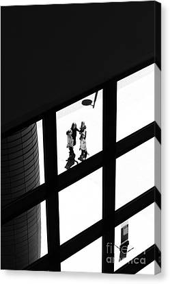 Caught In The Window Canvas Print