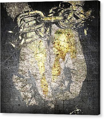 Caught  Canvas Print by Tony Rubino