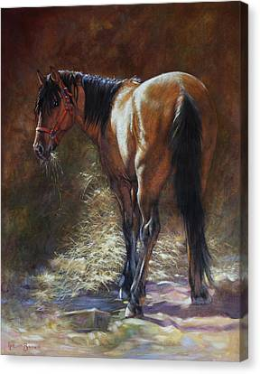 Bay Horse Canvas Print - Caught With A Mouthful by Harvie Brown