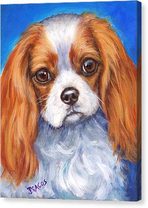 Cavalier King Charles Spaniel Blenheim On Blue Canvas Print by Dottie Dracos